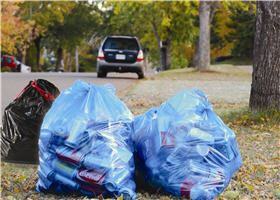 Recycling Bags at Curb
