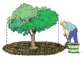 Clip art depicting the mulching composting method.