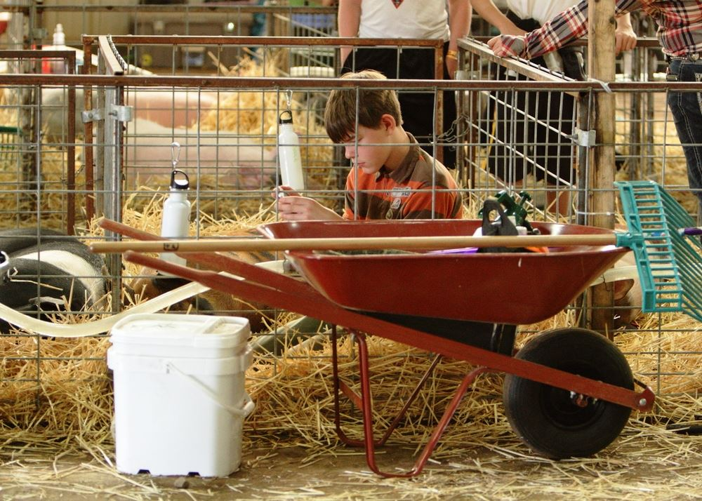 A boy sits in his pig pen at the 2014 Klickitat County Fair.