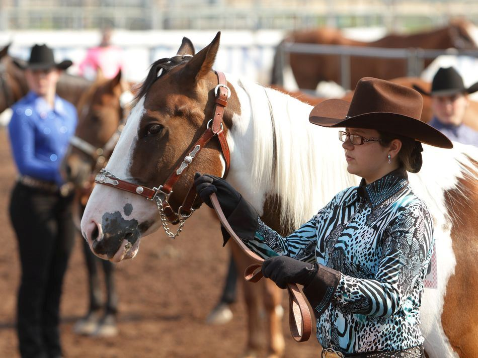 A young woman stands next to her horse at the 2015 Klickitat County Fair.