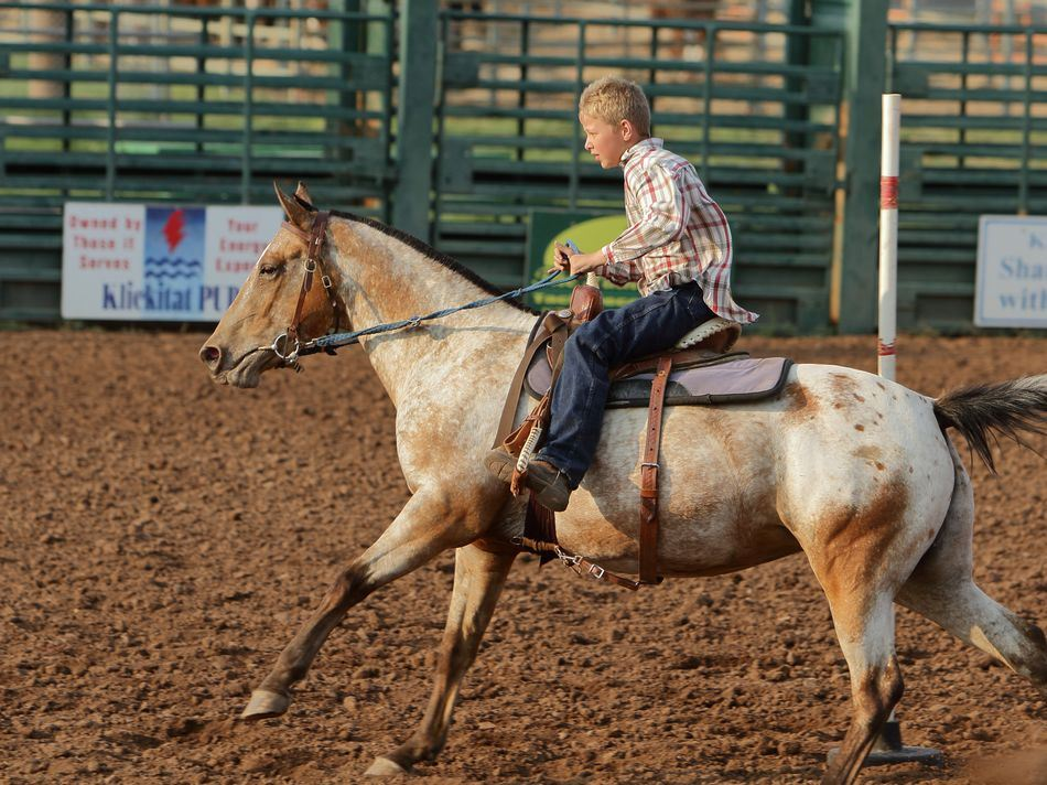 Little boy runs his horse at the 2015 Klickitat County Fair.
